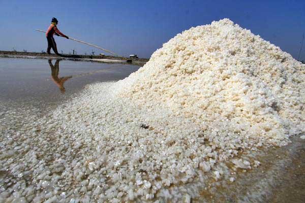 Harga Rp200/Kg Ratusan Ribu Ton Garam Tak Tertampung dalam Gudang Penyimpanan di Madura